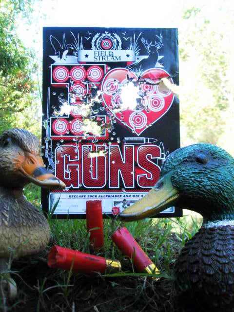 Last Chance to Enter the 2011 Gun Nut Target Photo Contest