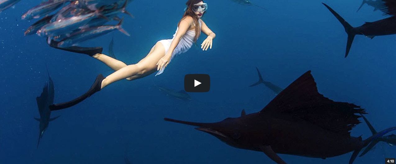 Video: GoPro Athlete Roberta Mancino Almost Speared by Sailfish