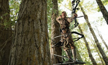 Breakout Bow Season: Tips and Tactics for Your Best Fall Ever
