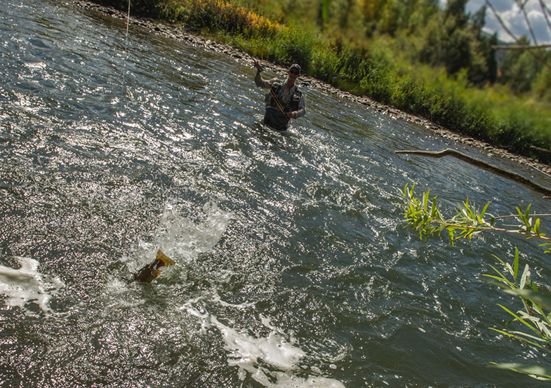 What's Your Most Memorable Fishing Assist?