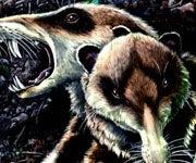 Scientists Discover Extinct Mammal Closely Resembles Squirrels