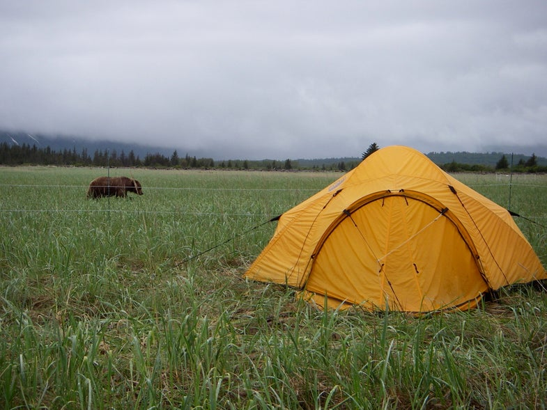 Camping With An Electric Bear Fence
