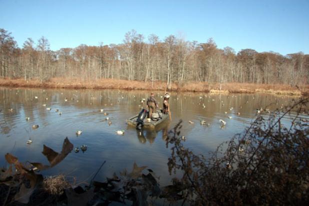 httpswww.fieldandstream.comsitesfieldandstream.comfilesimport2014importBlogPostembedDuck_Hunting_Tennessee.JPG