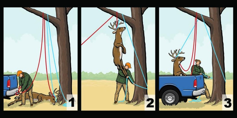Essential Skills: How to Hoist a Deer by Yourself