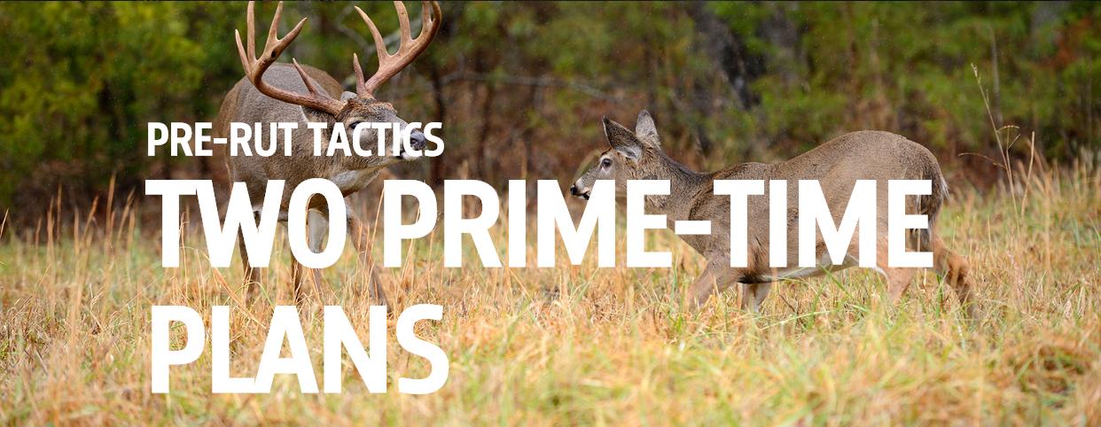 Pre-rut tactics, Two prime-time Plans