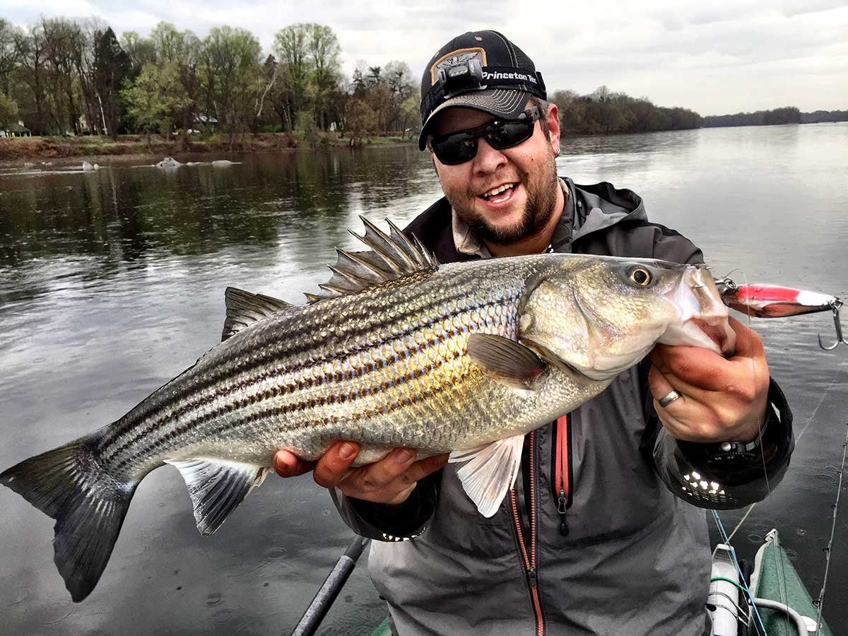 bass fishing, fishing technique, fishing strategies, hook stripers