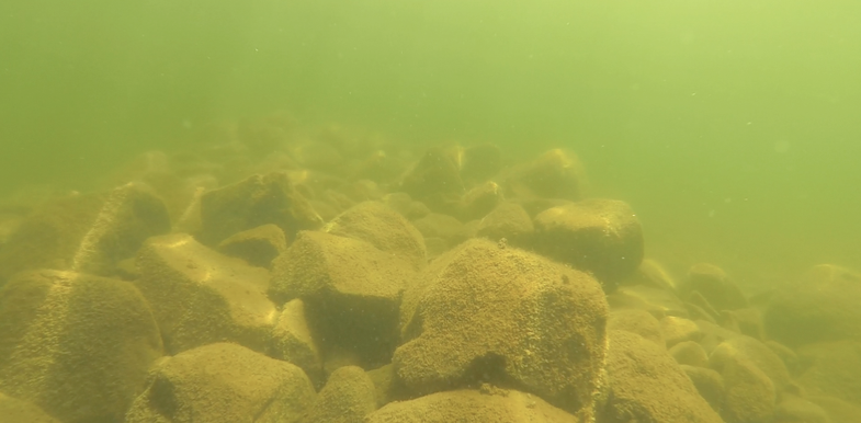 New Lure Tricks For Bass On Old Fall Rock Piles
