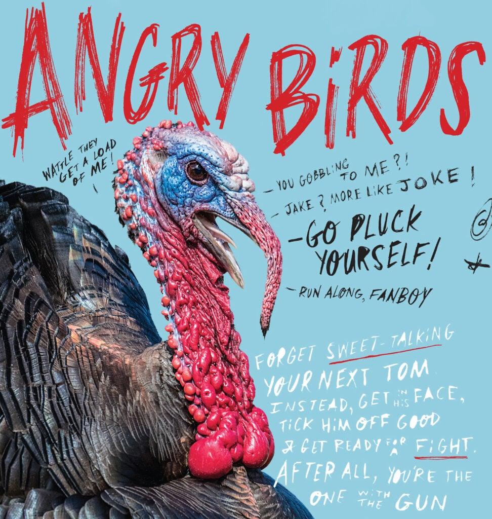 aggressive turkey tactics
