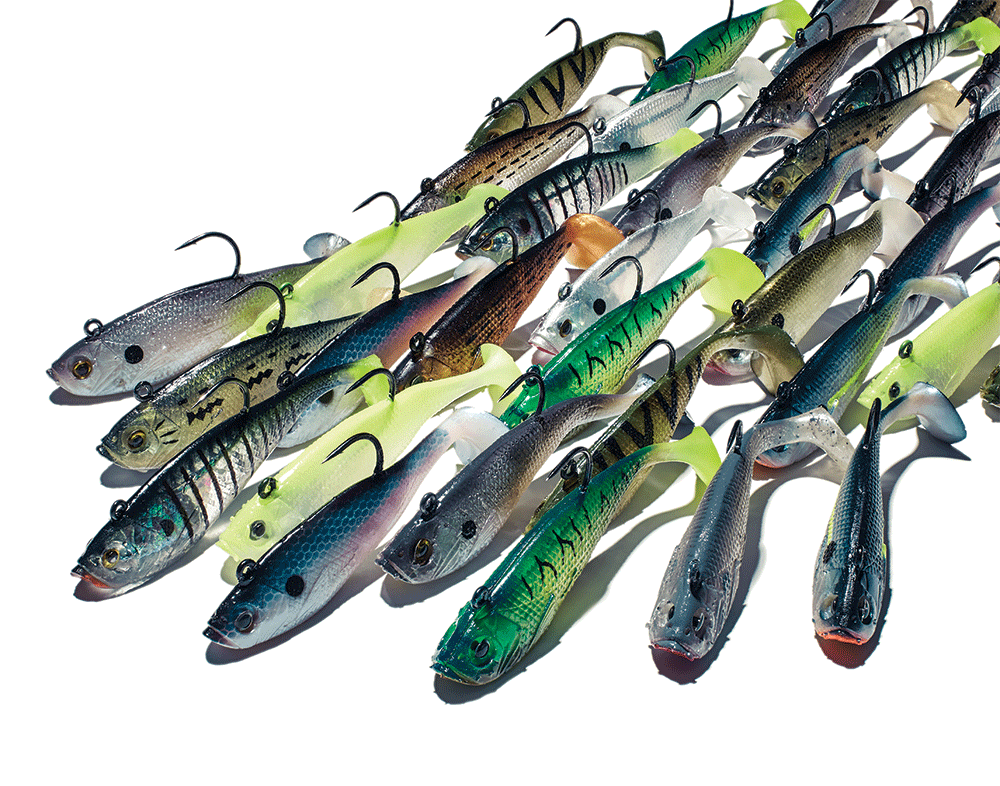 How to Fish a Swim Shad, the Most Versatile Lure Ever