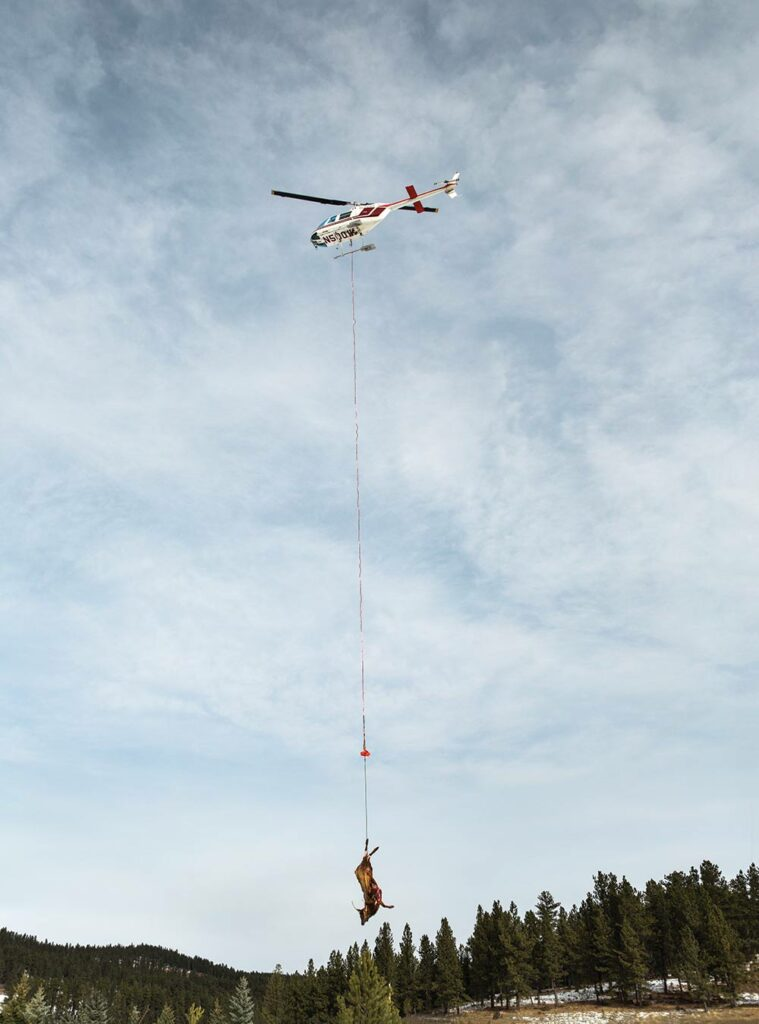 helicopter hauling meat from durfee hills