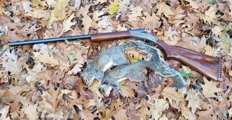 Model 48, 16-gauge Topper, single-shot shotgun