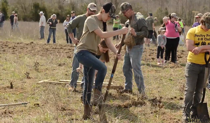 Hero for a Day 2014: Building Predator Cover for Quail in New Jersey
