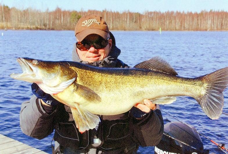 World Record Fish: 19 Potential Record-Breakers from the IGFA