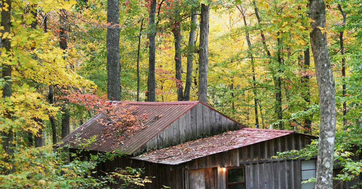 Consider This Before Buying Hunting Property
