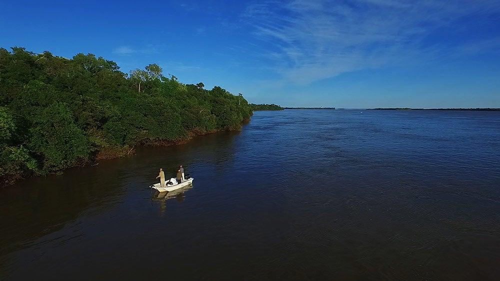 boat along the treeline of the parana river