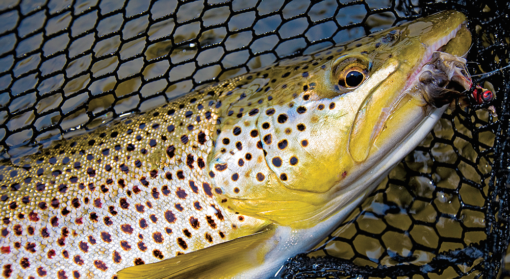 early-season streamers, streamer fishing, trout,
