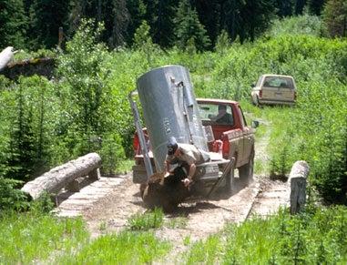 1987 Montana Bear Attack