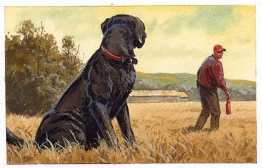 14 Classic Dog-Training Tips From Field & Stream