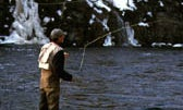 John Geirach's Tips for Catching Early-Spring Trout