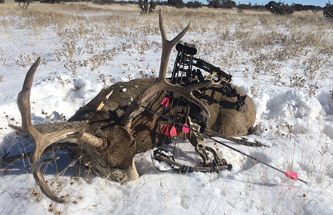 A Good Time for a Last-Chance Buck