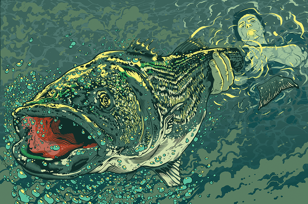 Letting Go: Deciding the Fate of a Striped Bass That Took 15 Years to Catch