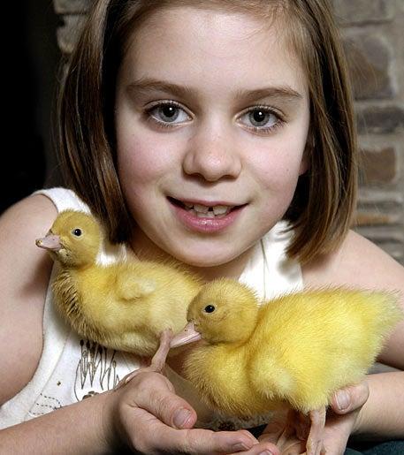 """Duckling"""