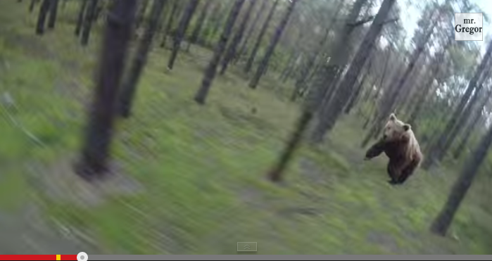 Spot the Fake: Two Videos of Bears Chasing Cyclists