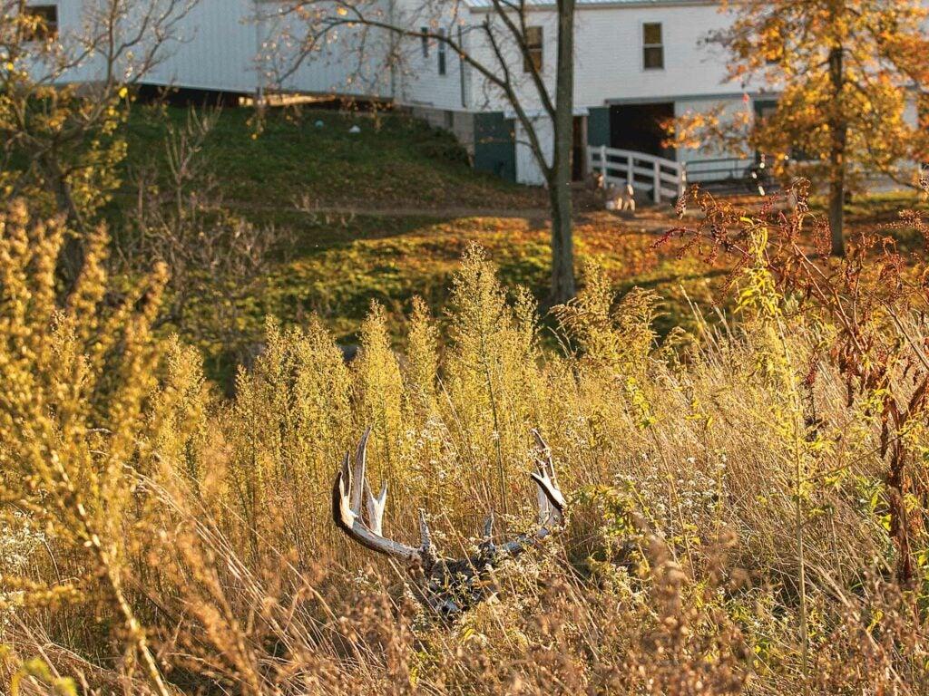 11 point buck creek farmhouse