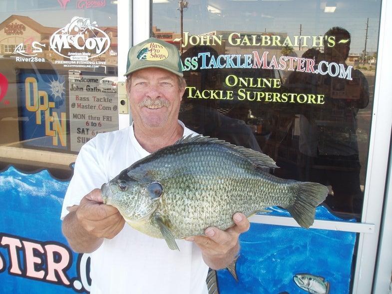 Photos: New Potential World Record Sunfish from Arizona's Lake Havasu