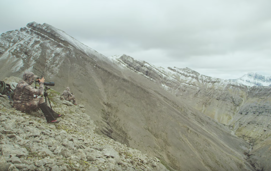 Video: Are You Tough Enough to Sheep Hunt?