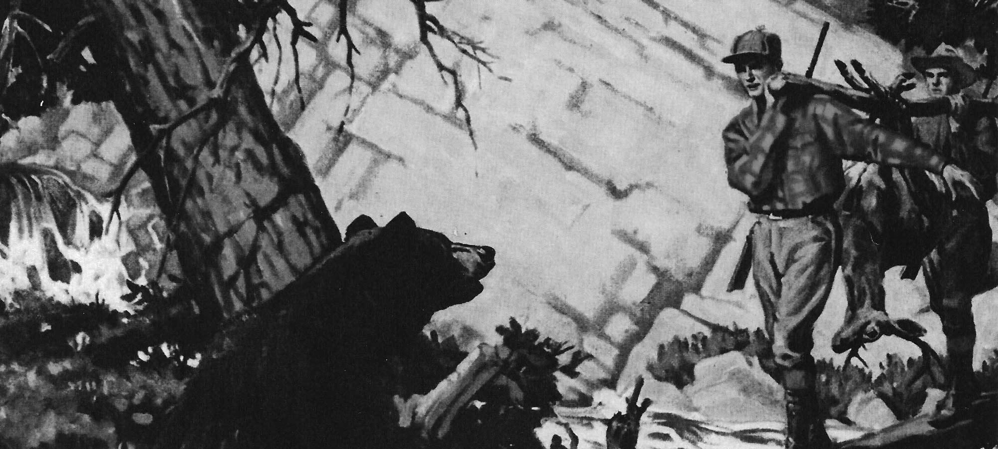 outdoor life bear cover