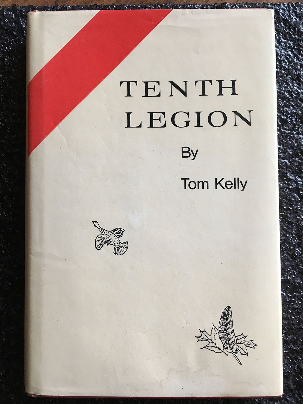 tenth legion book cover by tom kelly