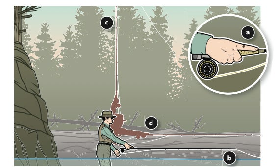 Trout Tip: Master The Steeple Cast