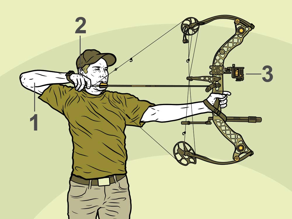 pro archery hunting tips