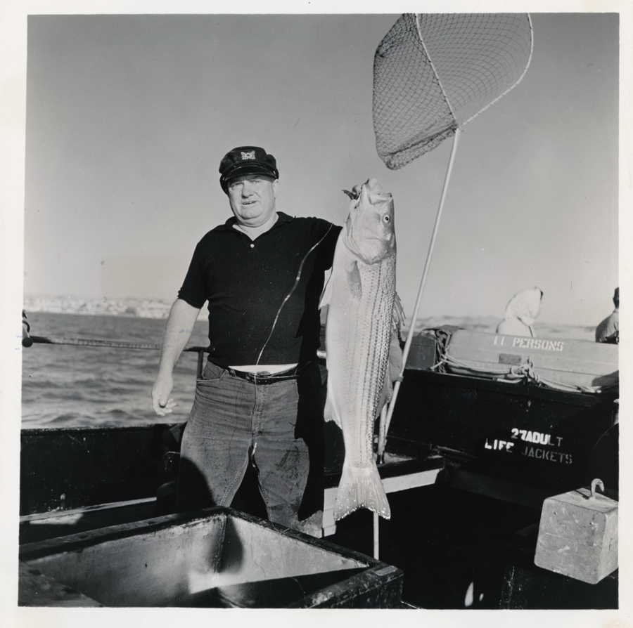 A black and white image of an angler holding up a striped bass.
