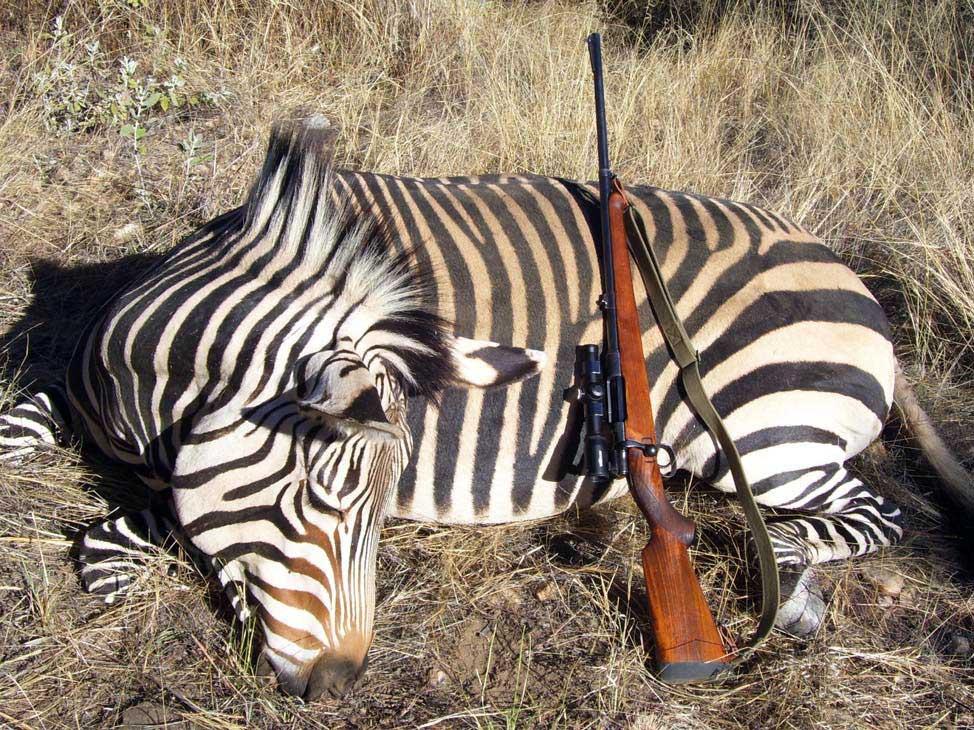 Model 640 on an African safari