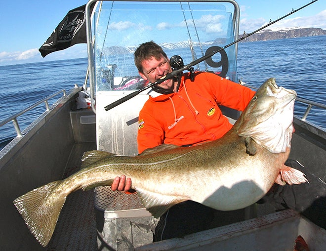 103-Pound Atlantic Cod Caught in Norway is Pending World Record