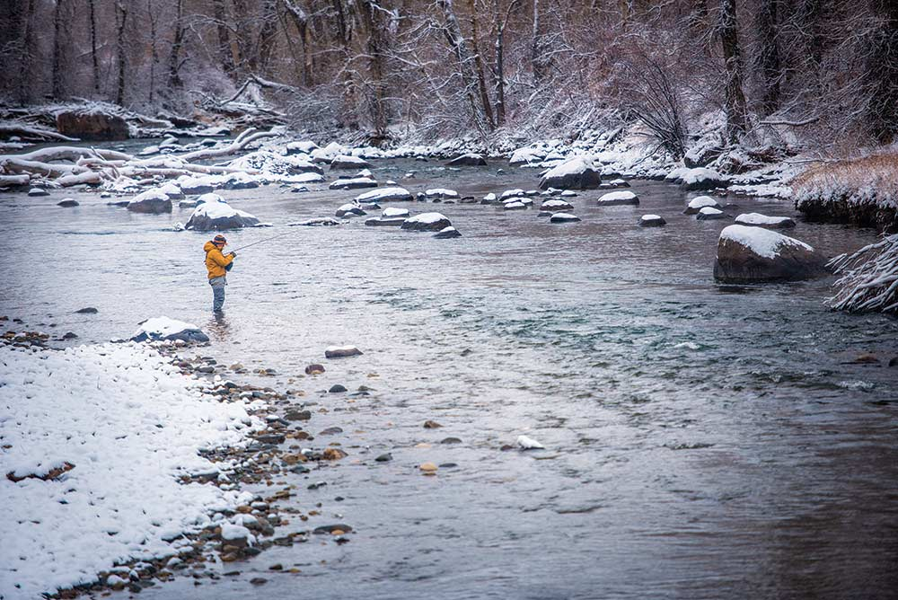 fishing the cold montana river