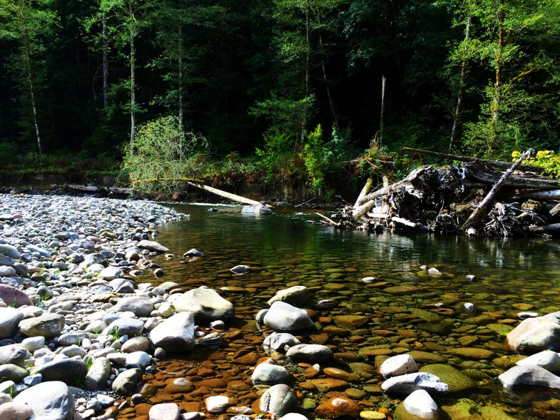 Oregon Salmon River