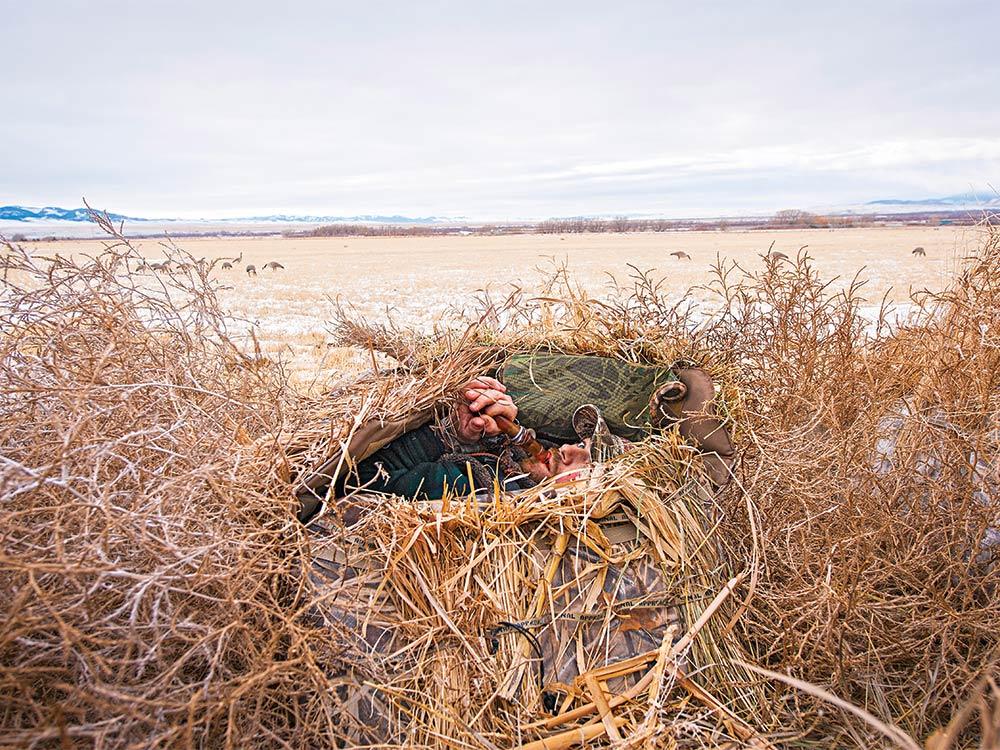 Hidden waterfowl hunting blind