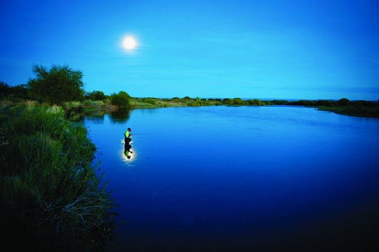 The Best Flies for Night Fishing and How To Use Them