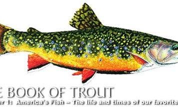 America's Fish