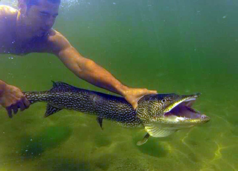 The CatchFeed: 60 Top Photos from Catchbook, Field & Streams New Social Fishing App