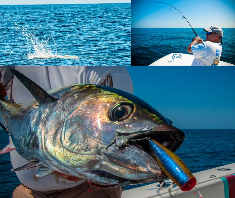 You Haven't Popped A Fish Until You've Popped A Bluefin Tuna