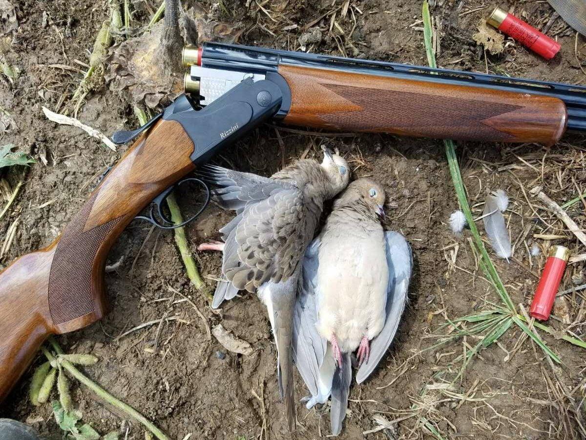 rizzini gun and dead doves