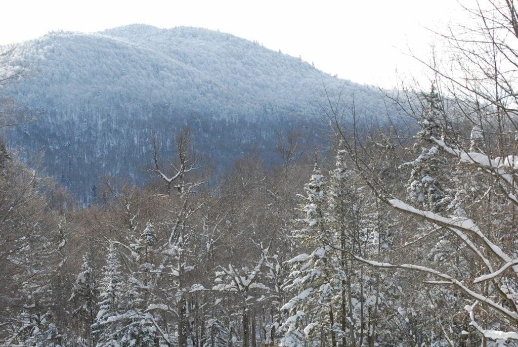 httpswww.fieldandstream.comsitesfieldandstream.comfilesimport2014importImage2011photo38356Slide_20_-_Snow-covered_landscape.JPG