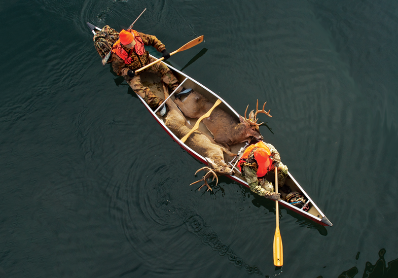 Wilderness Whitetails: Hunt and Haul Bucks by Canoe