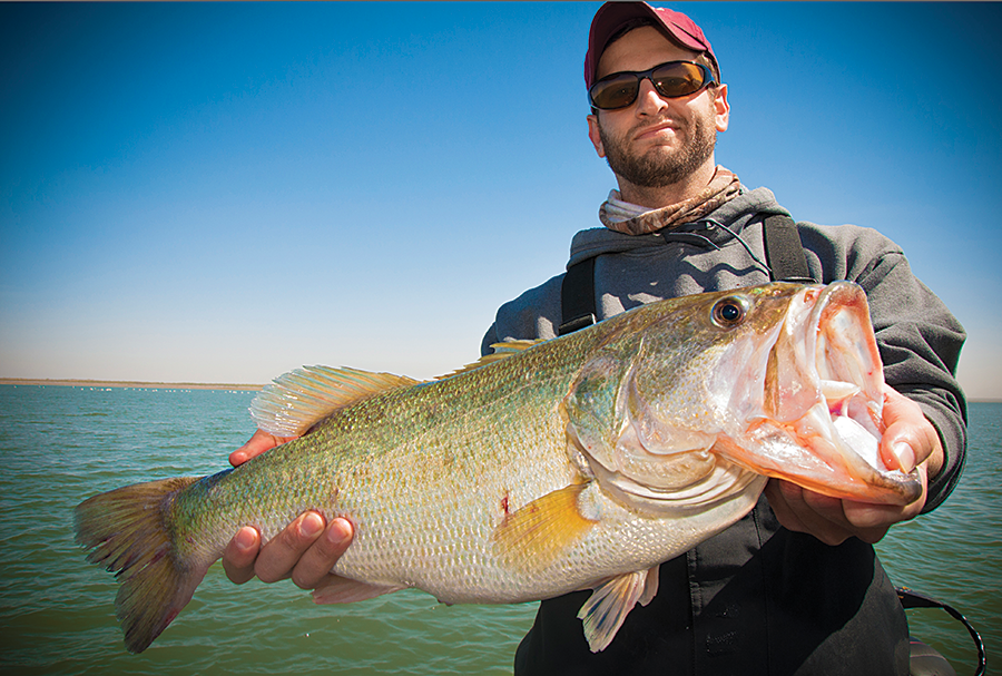 Three Best Finesse Tactics for Pressured Bass