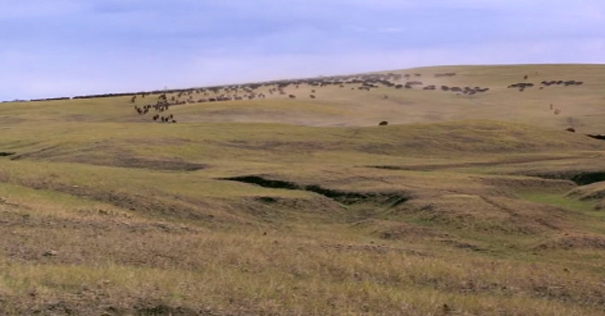 Is Ted Turner Buying the Dances with Wolves Ranch?