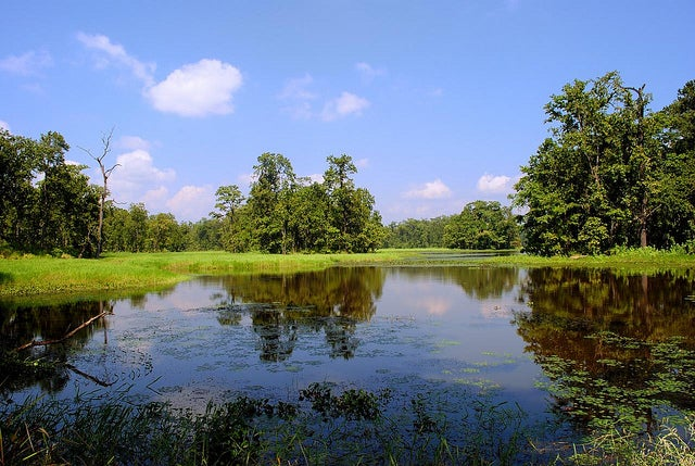 Two Largely Overlooked Places To Find Summer Bass